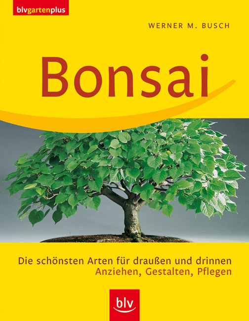 bonsai geschenk set 5 teilig as 237b genki bonsai. Black Bedroom Furniture Sets. Home Design Ideas